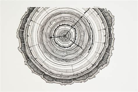 Tree Ring - small tree ring tessa chauvin