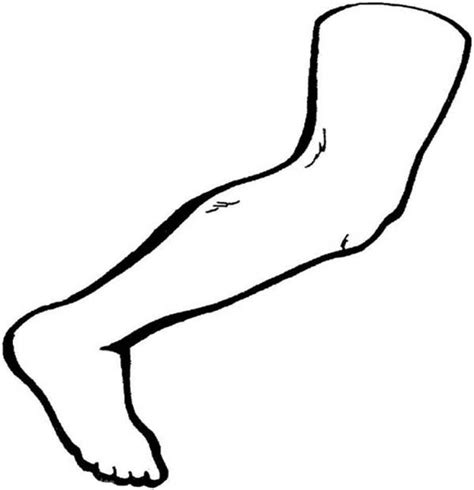 human anatomy nose coloring pages bulk color coloring page leg anatomy coloring page coloring pages