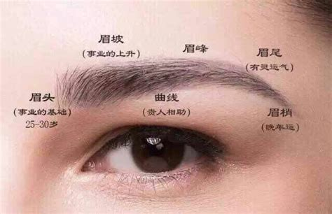 best eyebrow tattoo pen 20 best microblading pens images on pinterest pens