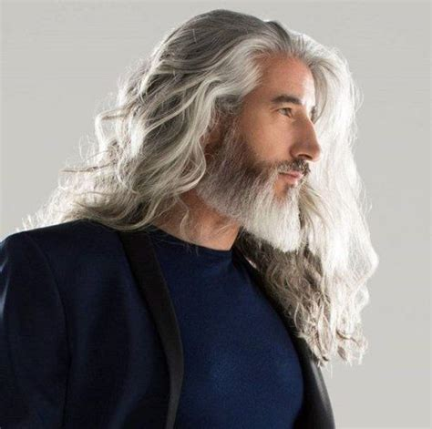 gray long hair men 147 best distinguished images on pinterest beards