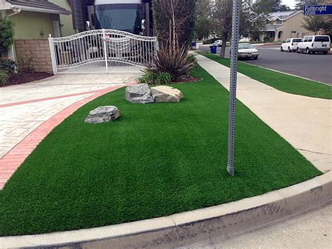 top 28 best looking lawn grass carefree fine fescue