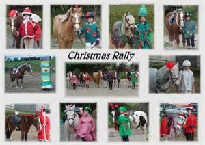 Christmas pony fancy dress ideas images