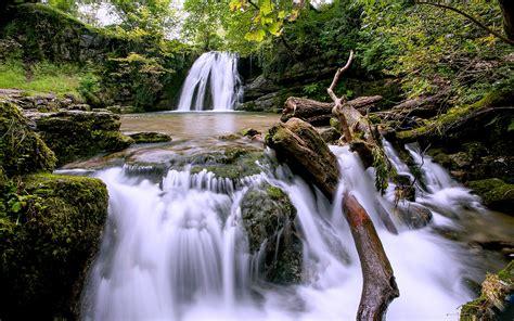 forest waterfall wide desktop background hd desktop