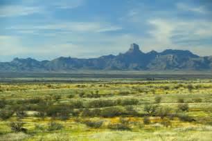 file desert plants landscape scenic jpg wikimedia commons