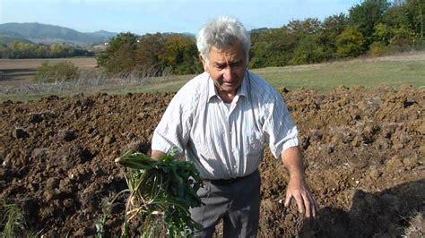 il giardino di emilia hazelip kebio agricoltura naturale pasquale e l orto sinergico