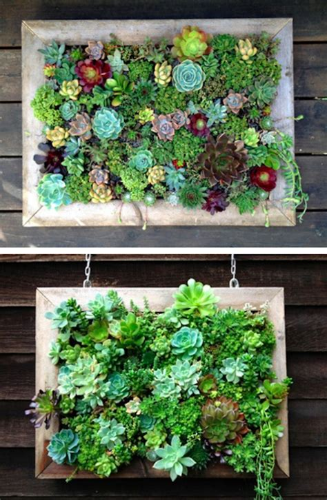 Vertical Garden Frames 15 Inspiring And Creative Vertical Gardening Ideas And