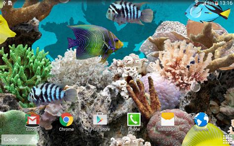 www fish live wallpaper coral fish 3d live wallpaper apk for android