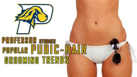 current trend pubic hair current trend pubic hair evolution of pubic hair and