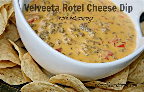 velveeta rotel cheese dip where flours bloom