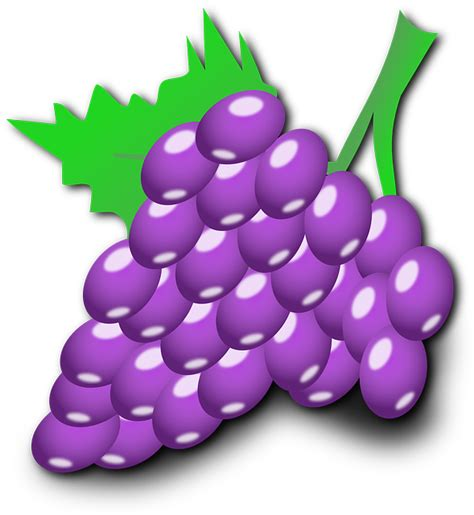 imagenes de uvas animadas green food fruit wine grapes outline cartoon