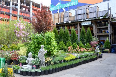 Garden Center Nursery Best Plant Stores Nyc Offers To Create An Indoor Jungle