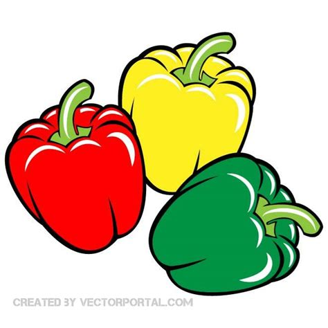 clipart vectors paprika vector clip at vectorportal