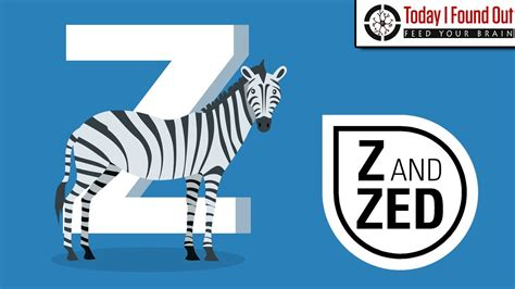 How To Pronounce Letter Z why do some speaking countries pronounce z as quot zed