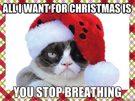 All I Want For Christmas Meme - all i want for christmas is you stop breathing a grumpy