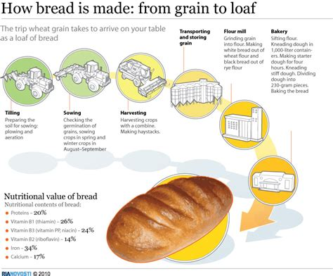 How Is A Made by How Bread Is Made From Grain To Loaf Sputnik International