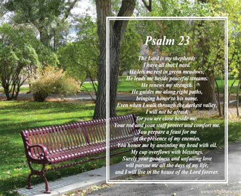 psalm for comfort in death 10 comforting bible verses for those facing the death of a