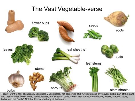 vegetables underground the vast vegetable verse today i