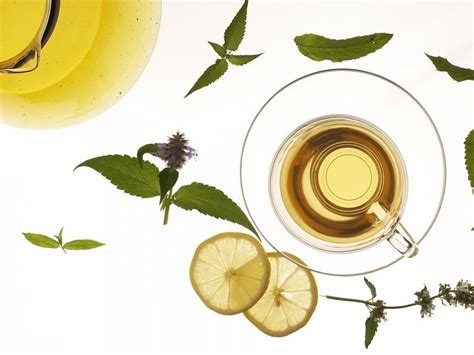 Free Tea With Mint And Lemon Backgrounds For Powerpoint Tea Ppt Template Free