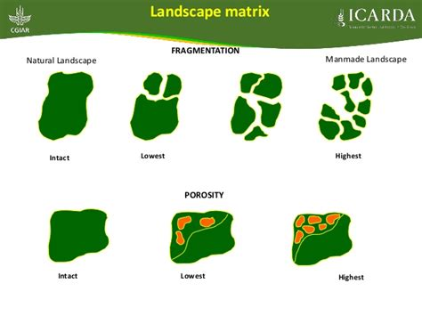 Landscape Ecology Matrix Definition Theme 1 Geoinformatics And Genetic Resources
