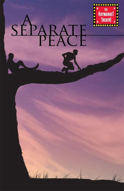 a separate peace book report knowles separate peace book cover