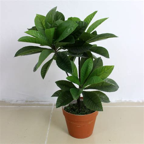 buy house plants online cheap wholesale indoor home decoration artificial plant with cement flower buy decoration artificial