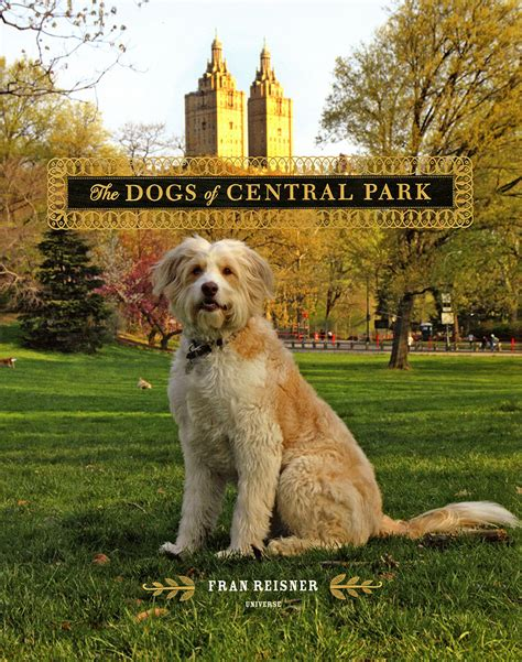 central park puppies the dogs of central park luxury