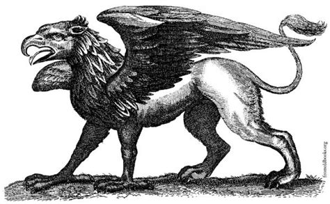 animal mitologico grifo los animales mitol 243 gicos m 225 s poderosos 6 pasos