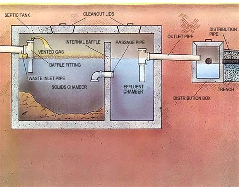 diagram of a septic tank system secrets of the septic system homesteading and livestock