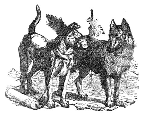 the wolf and the house dog aesop fables the wolf and the house dog