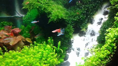 aquascape youtube aquascape waterfall youtube