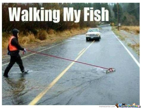 Fishing For Likes Meme - just walking my fish by phoenix007 silece meme center