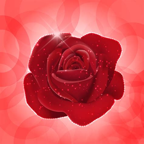 theme red rose download red rose theme free vector download 9 138 free vector