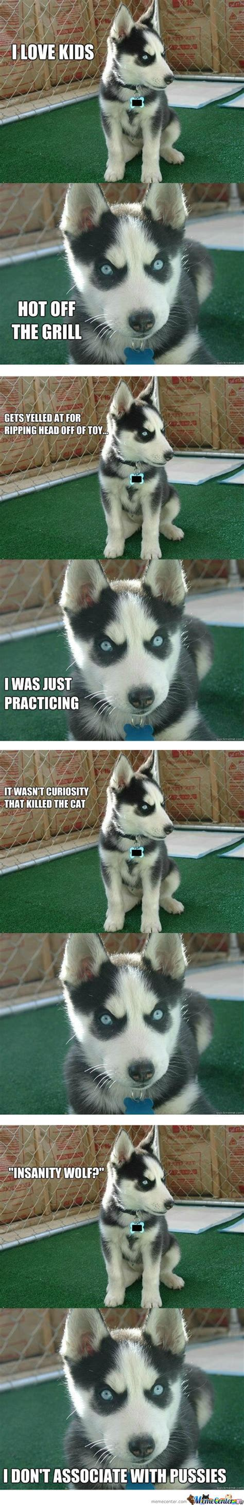 insanity puppy insanity puppy memes best collection of insanity puppy pictures