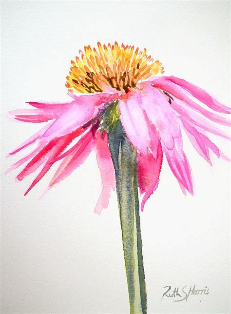 The Watercolour Flower Artist S Bible 91 best floral images on paintings of flowers flower and water colors