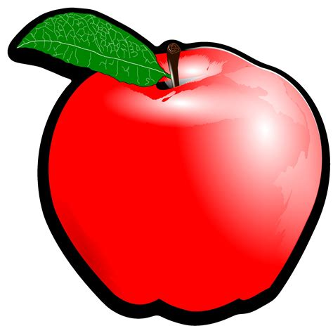 clipart png apple clipart png elegantgowns net