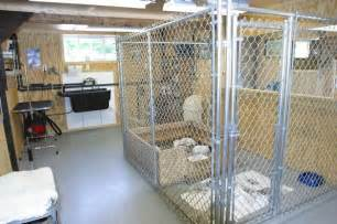 Whelping house area dog kennel ideas pinterest house