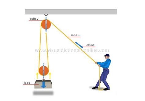 physics of the human lose weight for books science physics mechanics pulley system