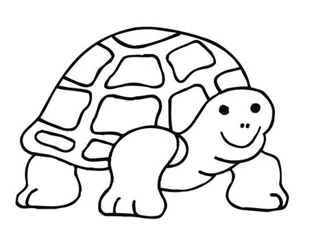 tortoise color coloring pages tortoise coloring home