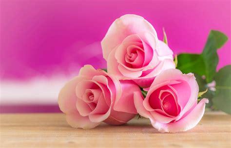 fiori per mamma idee regalo economiche per la festa della mamma a casa