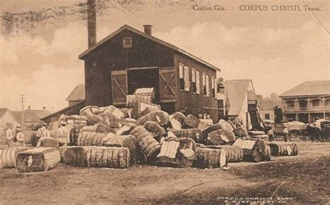 cotton gins the beauch collection