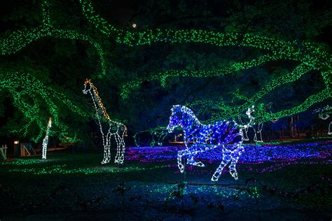 houston zoo lights tickets houston zoo txu energy presents zoo lights zoo lights