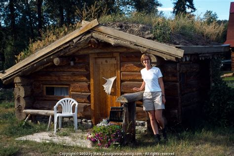 tiny cabins can you see yourself living in one of these 7 tiny cabins