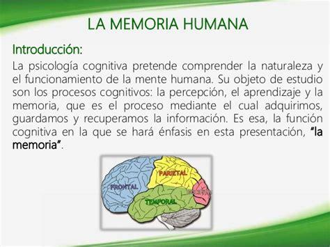 la memoria secreta de funciones cognitivas la memoria humana