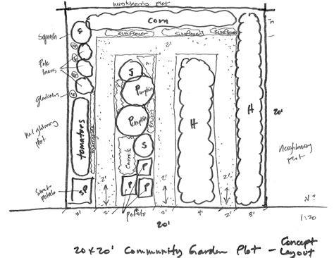 10x10 Kitchen Layout Ideas by 20x20 Vegetable Garden Concept Layout With Sunflower And