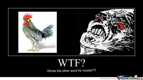 rooster meme rooster by ozjake meme center