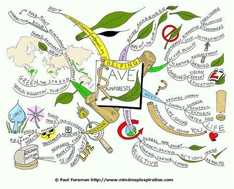 The Helping Save Rainforests Mind Map Created By Paul
