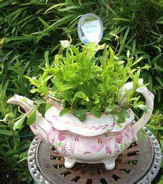 Large Teapot Planter by 1000 Images About Tea Cup Teapot Planters On