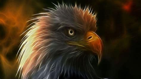 imagenes artisticas para facebook imagen art 237 stica de un 225 guila 1366x768 fondos de