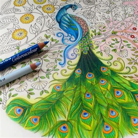 secret garden coloring book instagram johanna basford picture by chris cheng colouring