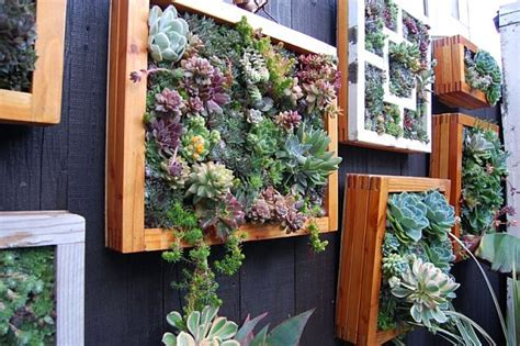 Diy Vertical Succulent Garden Diy Green Living Wall Projects You Could Try Your At